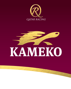 Kameko homepage ribbon